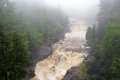 Backwoods river north of superior minnesota in the fog Royalty Free Stock Photo