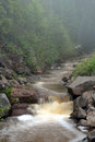 Backwoods stream north of superior minnesota in the fog Stock Image