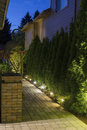 Jardín manera en noche