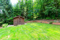 Backyard garden with wooden shed beautiful green Royalty Free Stock Images