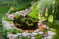 Backyard pond beautiful in a surrounded with stone during summer Royalty Free Stock Images