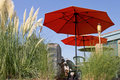 Backyard Waterfront Living Royalty Free Stock Photo
