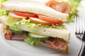 Bacon,Turkey and Tomato Sandwich Royalty Free Stock Photos