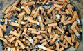 Bad addiction cigarette butts background Royalty Free Stock Photography