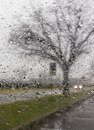 Bad weather driving on a way Royalty Free Stock Photo