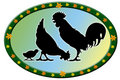 Badge with chicken family Stock Photography