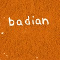 Badian abstract background made of powder with text Royalty Free Stock Images