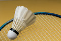 Badminton ball with racket Royalty Free Stock Photography