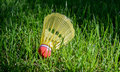 Badminton birdie in the green grass a or shuttlecock laying Royalty Free Stock Images