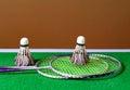 Badminton playing set Royalty Free Stock Photo