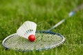Badminton racket with shuttlecock on short grass Royalty Free Stock Photography