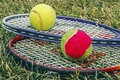 Badminton rackets and balls placed on the grass Stock Photos