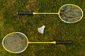 Badminton rackets on the green grass Stock Photography