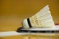 Badminton shuttlecock on racket new Royalty Free Stock Photography