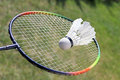 Badminton shuttlecocks on racket sport Stock Images