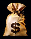 Bag with dollars Stock Image