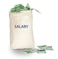 Bag with salary Royalty Free Stock Photo