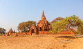 Bagan panorama in temples and stupas with a field in a front Royalty Free Stock Photos
