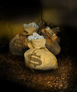 Bags of money Royalty Free Stock Photo