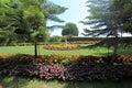Bahai Gardens on Mount Carmel in Haifa Royalty Free Stock Photo
