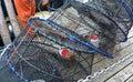 Baited Spot Prawn Traps Royalty Free Stock Photo
