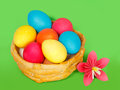 Baked basket with easter colored eggs on a green background Royalty Free Stock Image