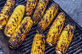 Baked corn on the grill to be served Stock Photos