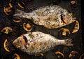 Baked dorado fish in garlic dill sauce with mushrooms and lemon