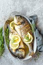 Baked fish dorado. Sea bream or dorada fish grilled Royalty Free Stock Photo