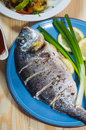 Baked fish on plate with lemons and green onion Stock Images