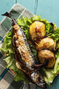 Baked fish and potatoes on plate above view Royalty Free Stock Photo