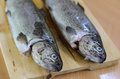 Baked fish rainbow trout stuffed on a cutting board wood Stock Photo