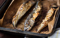 Baked fish on a roaster pan whole with baking paper Stock Photography