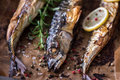 Baked fish on a roaster pan whole with spice lemon and rosemary with baking paper Royalty Free Stock Photos