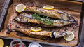 Baked fish on a roaster pan whole with spice lemon and rosemary with baking paper Stock Images