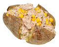Baked jacket potato with tuna and sweet corn filling isolated on a white background Stock Images
