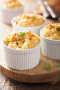 Baked macaroni with cheese Royalty Free Stock Photo