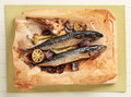 Baked Mackerel Stock Photography