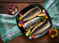 Baked mackerel with herbs Royalty Free Stock Photo