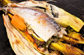 Baked mackerel with vegetables and herbs Royalty Free Stock Photo