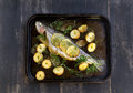 Baked rainbow trout delicious straight from the oven with potato lemon and herbs Royalty Free Stock Photos