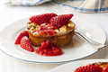 Baked ricotta dessert with strawberries delicious healthy Stock Images