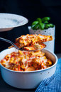 Baked rigatoni pasta Royalty Free Stock Photo