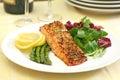 Baked salmon Royalty Free Stock Photo