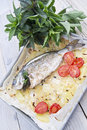 Baked sea bream main course of fish Royalty Free Stock Photos