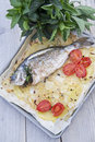 Baked sea bream main course of fish Stock Photo
