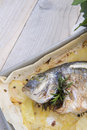 Baked sea bream main course of fish Royalty Free Stock Images