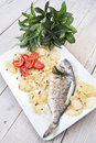 Baked sea bream main course of fish Stock Images