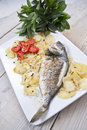 Baked sea bream main course of fish Stock Photos