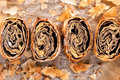 Baked strudel fresh poppy seed from above Royalty Free Stock Image
